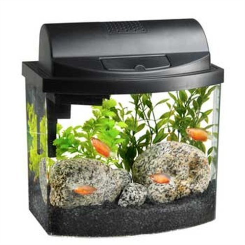 3. Aqueon Mini Bow 2.5 Gallon Desktop Aquarium Kit