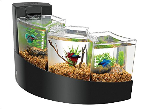 9. Aqueon Kit Betta Falls