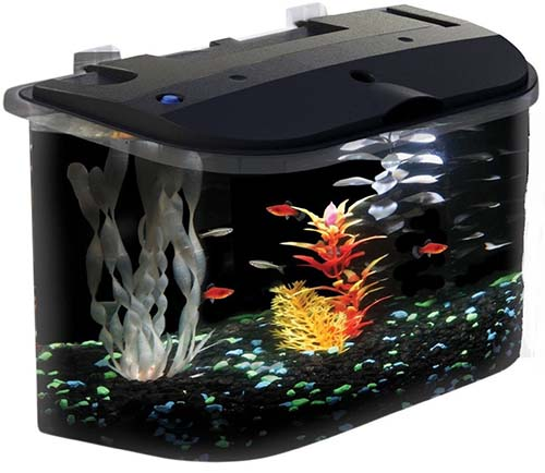 7. KollerCraft Aquarius Aquarium Kit with LED Lighting and Internal Power Filter, 5-Gallon