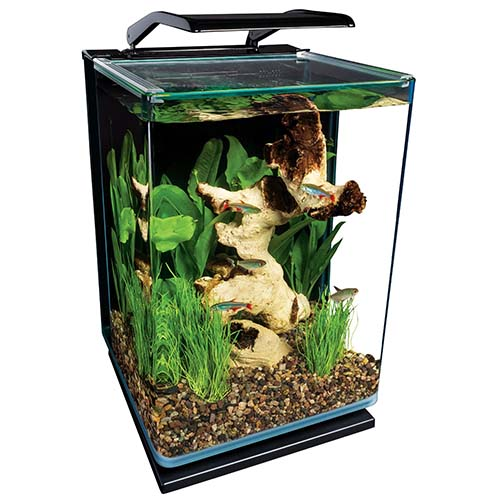 8. Marineland ML90609 Portrait Aquarium Kit, 5-Gallon