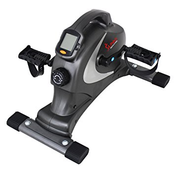 5. Sunny Health & Fitness SF-B0418 Magnetic Mini Exercise Bike